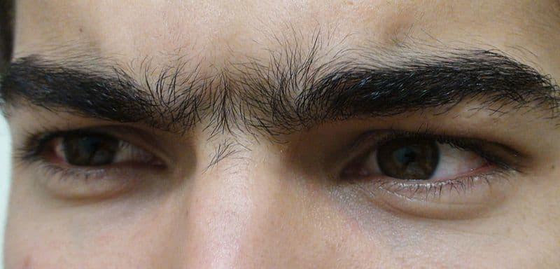 Unibrow Close Up